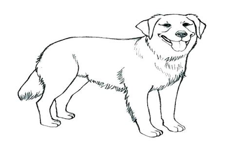Lab Coloring Pages at GetColorings