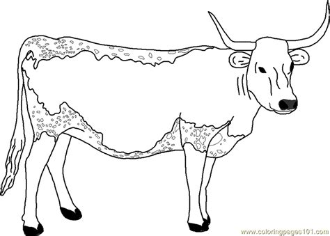 Longhorn cow clipart 20 free Cliparts   Download images on