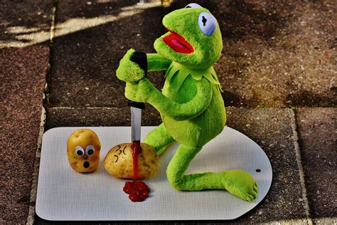 HD Exclusive Cute Pictures Of Kermit The Frog - positive