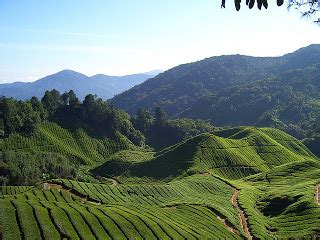 Best Places in World: Tourist-attractions-in-Malaysia