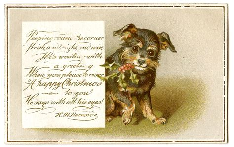 Antique Christmas Images - Dog with Holly - The Graphics Fairy