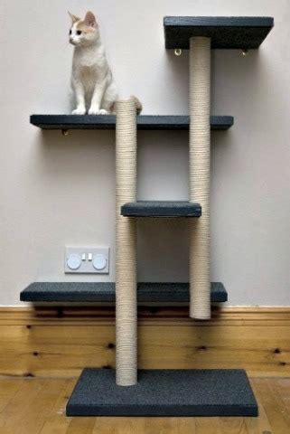 15+ Best Cat Scratching Posts - From Fun To Fabulous