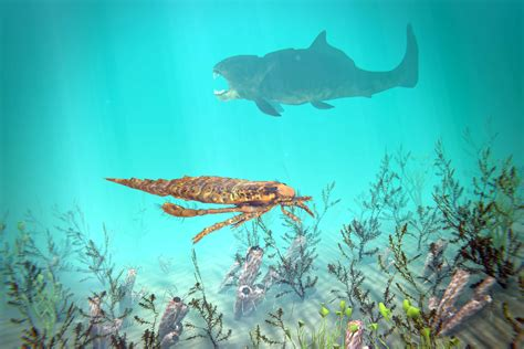 Prehistoric Life During the Ordovician Period