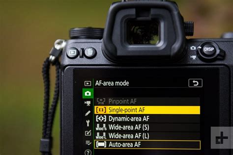 Understanding Your Camera's Focus Points | Camera House